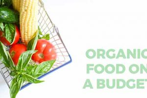4 Ways To Buy Organic Food On A Budget