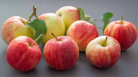 5 Winter Season Fruits to Eat to Boost Your Health