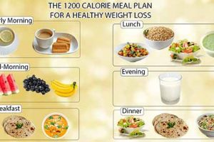 The 1200 Calorie Diet to Lose Your Weight Up to 20 Pounds